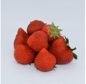 Fresas en Bandeja de 500 g